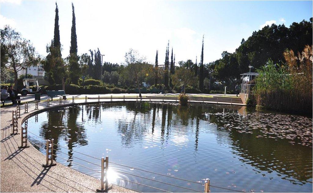 תמונה של האגם בפארק